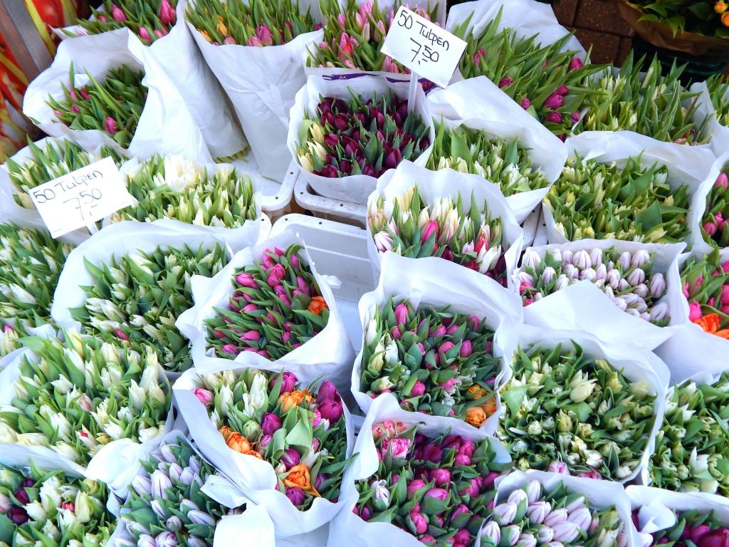 fleurs-amsterdam-marche